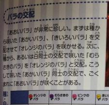 mori_kouryaku43.jpg