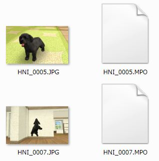 nintendogs_files.JPG