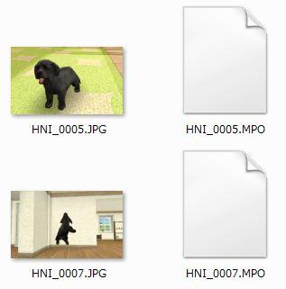 nintendogs_files.JPG